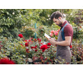 Садовник в компанию Живые сады - Сельское хозяйство, агробизнес в Краснодарском Крае