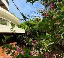 Сдается дом 220м² на участке 1 сотка - Аренда домов, коттеджей в Сочи
