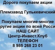 Покупка акций Племзавод Гулькевичский - Бизнес и деловые услуги в Гулькевичах