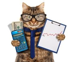 Бухгалтер по товару - Бухгалтерия, финансы, аудит в Краснодаре