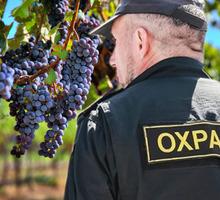 Требуются сотрудники для охраны виноградников г.Ялта, Крым. - Охрана, безопасность в Краснодаре