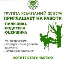 Пильщик - вальщик, арборист ! - Сельское хозяйство, агробизнес в Краснодаре