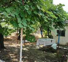 Продажа дома 40м² на участке 9 соток - Дома в Краснодаре