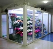 Холодильная камера для цветов со стекло-пакетом - Продажа в Краснодарском Крае