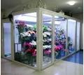 Холодильная камера для цветов со стекло-пакетом - Продажа в Краснодаре