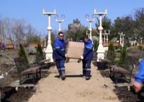 В Геленджике появился первый в городе «Сад друидов», фото — «Рекламы Геленджика»