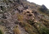 Одного туриста сняли со скалы, а другого достали из воды в Геленджике, фото — «Рекламы Геленджика»