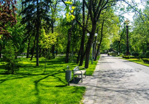 Порывистый ветер и кратковременные дожди придут в Краснодарский край в конце недели