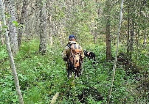 В Апшеронском районе спасатели вывели из леса 89-летнего пенсионера