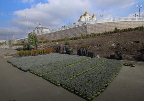 В Геленджике на территории Андреевского парка высадят 23 вида растений