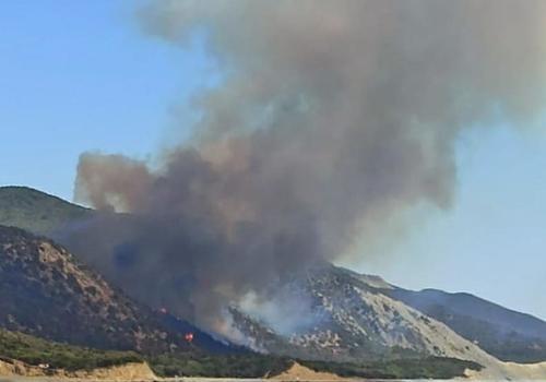 Полиция Анапы возбудила уголовное дело по факту лесных пожаров