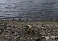 На Кубани реки могу выйти из берегов, фото — «Рекламы Славянска-на-Кубани»