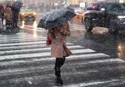 Top_news_na-kuban-vernulis-grozy-s-mokrym-snegom