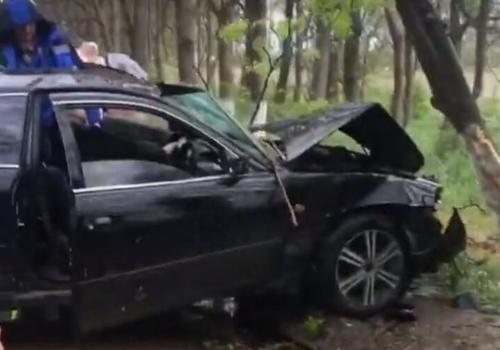 В Анапе водитель Toyota врезался в дерево и скрылся с места ДТП ВИДЕО