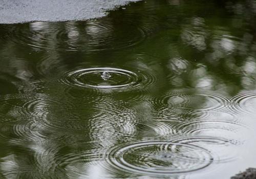 В среду во многих районах Кубани будет дождливо