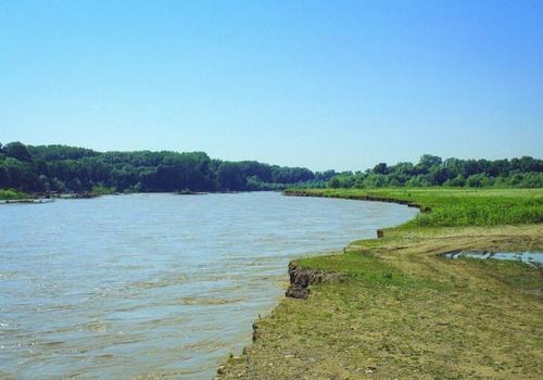 В реке Кубань обнаружено тело мужчины