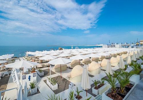 Эксперт рассказал, когда могут снизиться цены на курортах Кубани