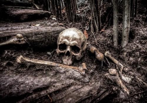 В горах Адыгеи туристы нашли человеческие кости