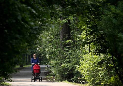 В России 1 июля стартует прием заявлений на пособия беременным и неполным семьям
