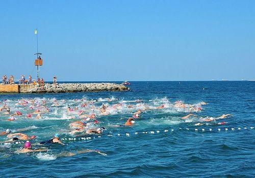 Заплыв «Морская миля» в Геленджике отменили из-за коронавируса