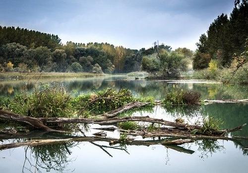В Краснодарском крае планируют восстанавливать реки