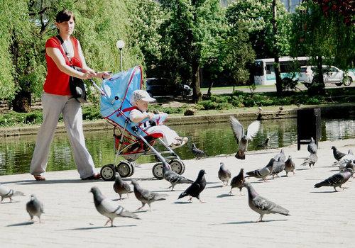 В России с 2022 года увеличится размер пособия по уходу за ребенком