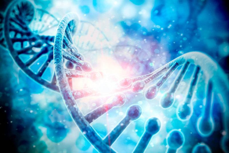 Где проводят анализ на ДНК в Геленджике