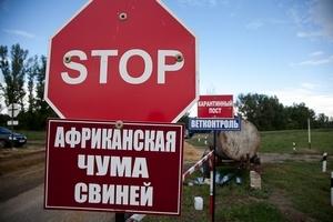 Краснодарский край отгородился от Крыма карантинным постом с дезинфекционным барьером