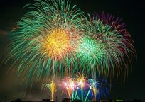 Category_fireworks-180553_640