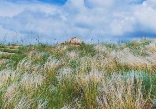 В Крыму создали особо охраняемую природную территорию «Парпачский гребень»