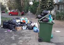 Конфликт с душком: почему Севастополь тонет в собственных отходах, фото — «Рекламы Севастополя»