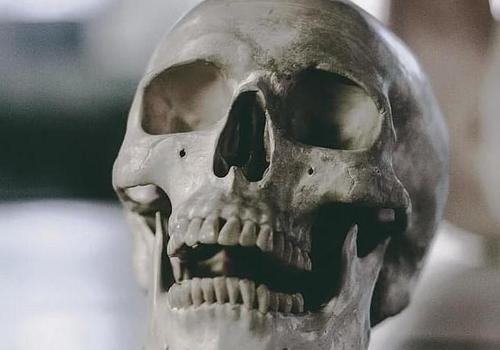 Ученые нашли череп эпохи бронзы со следами прижизненной трепанации в Крыму