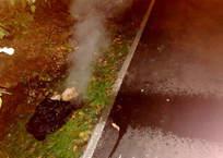 Прорыв теплосети в Севастополе прикрывали полиэтиленовым пакетом ФОТО, фото — «Рекламы Севастополя»