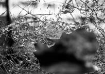 Под Севастополем мусоровоз убил пешехода, фото — «Рекламы Севастополя»