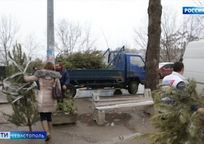 Category_31687_v-sevastopole-utilizatsiya-n