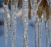 Mini_ice-953205_640