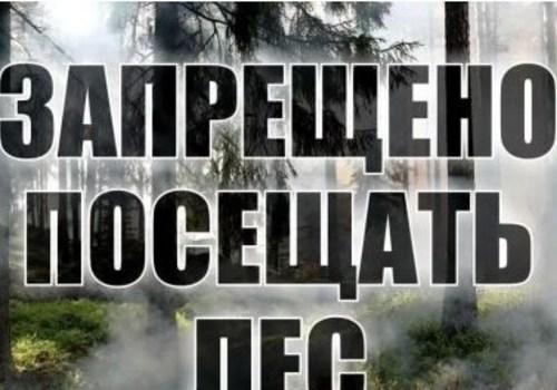 Доступ в леса Крыма на майские праздники будет закрыт