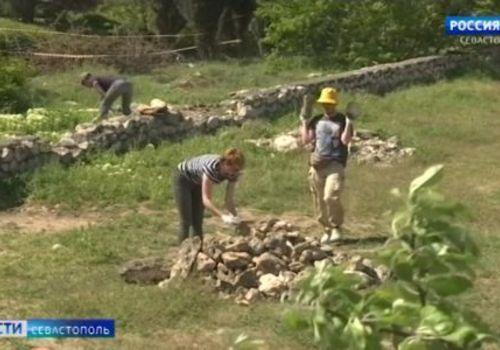 У хоры Херсонеса в Севастополе разобьют виноградник по эллинской технологии