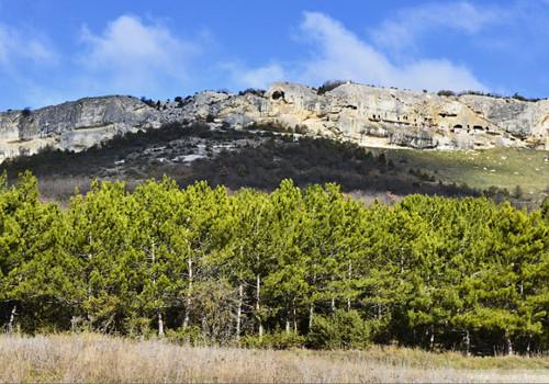 В Севастополе мужчина сорвался с горы Челтер и разбился