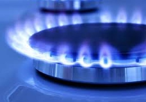 Госдума торопится принять закон о бесплатной газификации домов россиян