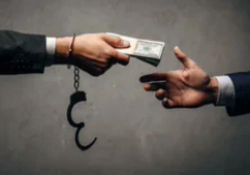 Чиновницу в Ялте подозревают в незаконной передаче земель под застройку