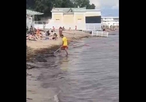 Уборщик пляжа в Евпатории стал героем соцсетей ВИДЕО