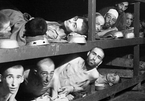 Рассекречены документы о жестоких экспериментах нацистских врачей в Крыму