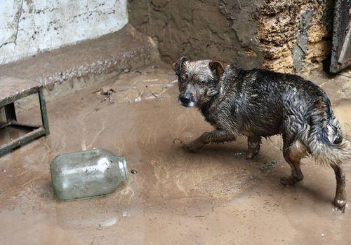 Утонувшая долина: наводнение в Крыму ФОТО
