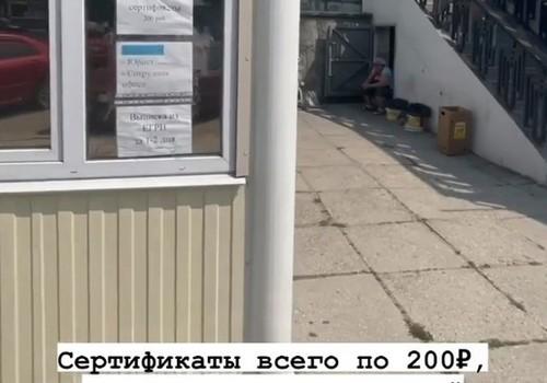 """Жителям Севастополя предлагают распечатать сертификат о прививке от коронавируса: """"всего за 200 рублей"""""""