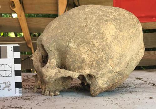 На некрополе в Крыму обнаружены погребенные с деформированными черепами ФОТО