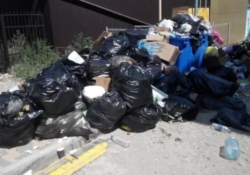 Мусорный коллапс: Жители затопленной Керчи погрязли в кучах бытовых отходов
