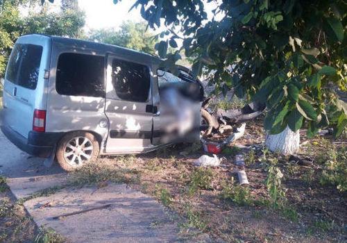 Смертельное ДТП в Крыму: иномарка влетела в дерево