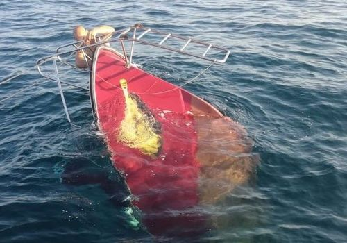 Катер с девятью пассажирами затонул у побережья Севастополя из-за медузы