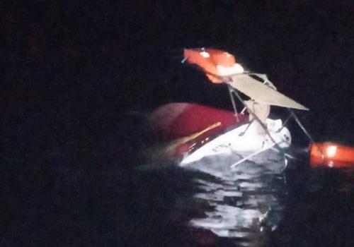 В Крыму из-за медузы затонуло прогулочное судно
